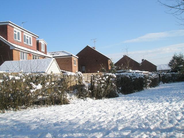 Rear of houses in Ramsdale Avenue as seen from Bushy Lease