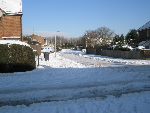 Looking from Quarely Road into a snowy Shawford Grove