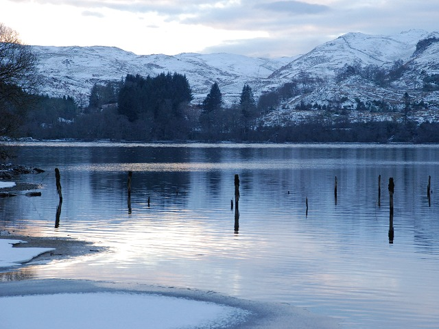 Remains of fence in Loch Awe