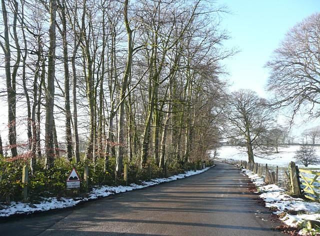 Driveway to Thurnham Hall