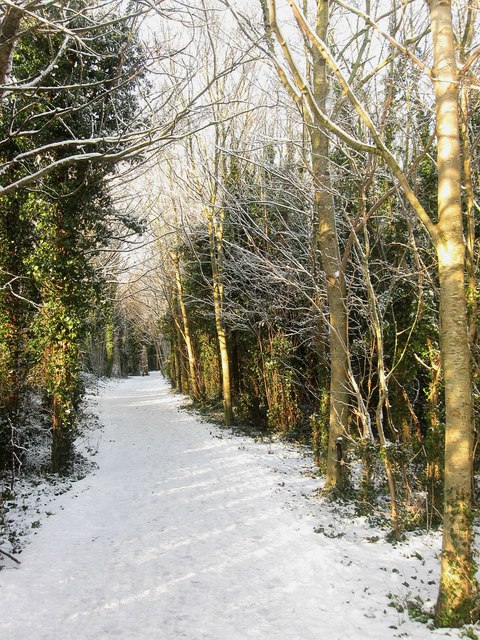 Footpath and Cycleway, Benfield Valley