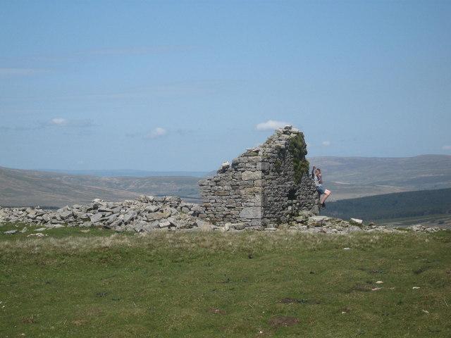 Ruin at Duncan Sike Foot, Cumbria
