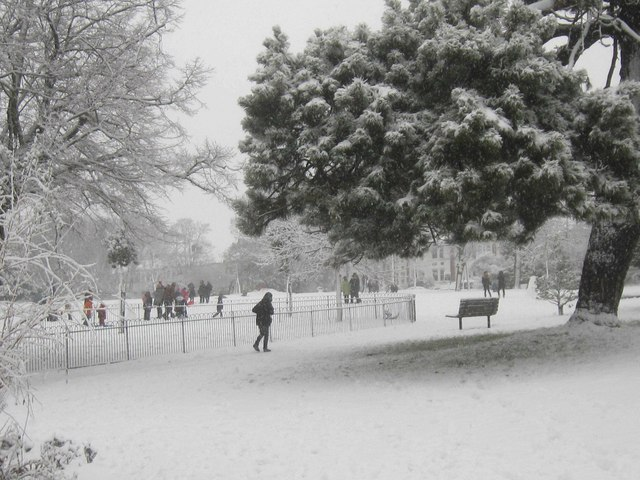 Snow in Blaker's Park