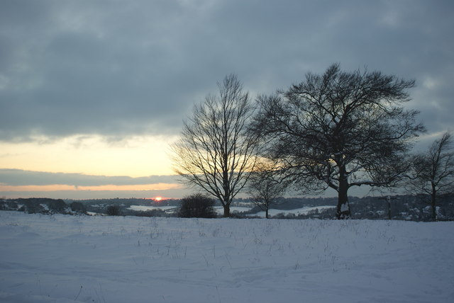 Winter on Farthing Downs