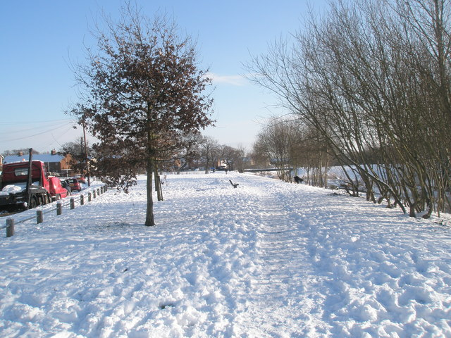 A snowy scene at The Oaks (1)