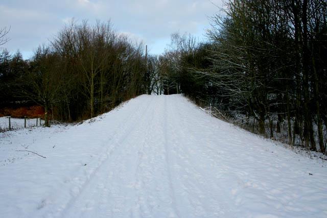 Farm road and public bridleway