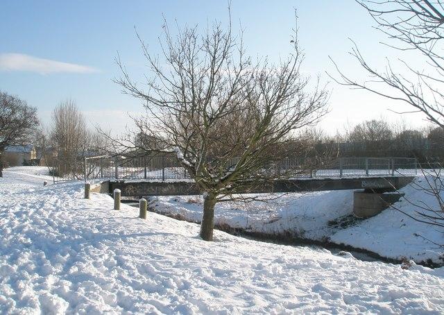 A snowy scene at The Oaks (5)