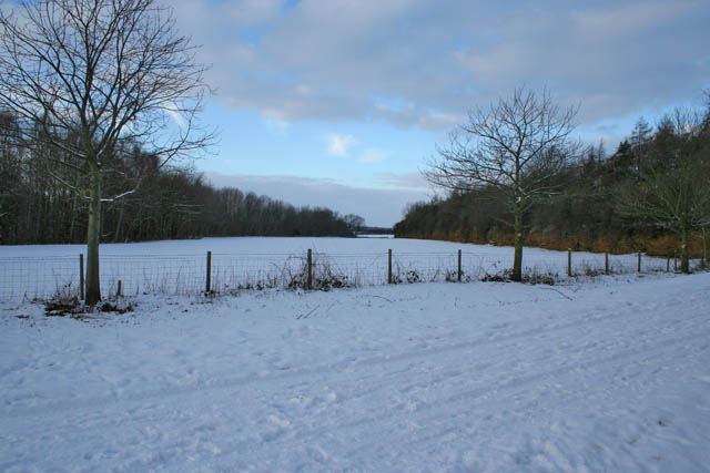 Field to the north of the farm road