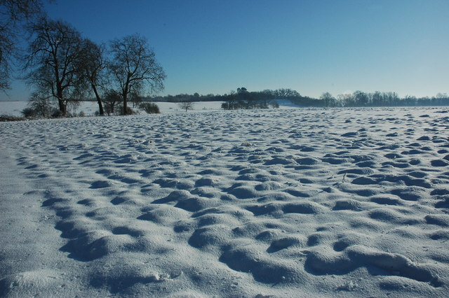 Snow covered Croome Park