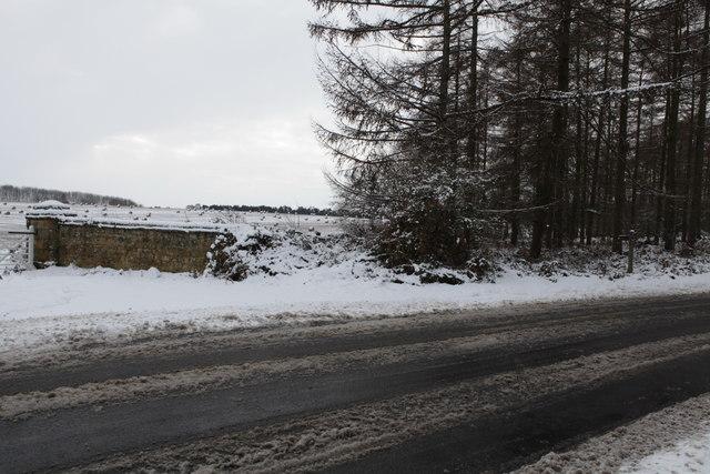 Road from Castle Howard to Terrington