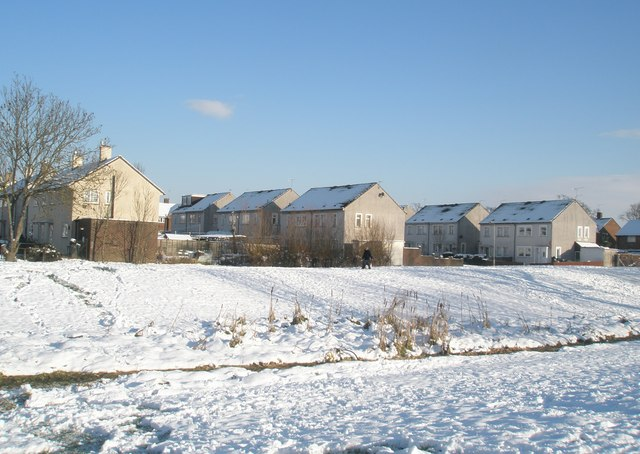 A snowy scene at The Oaks (9)