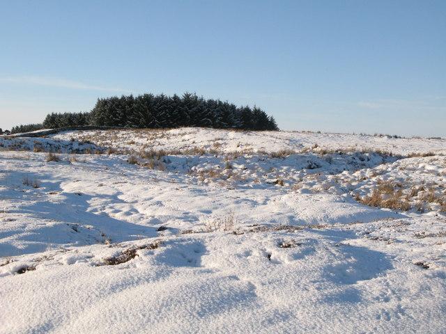 Snowy moorland east of Glenhill Plantation
