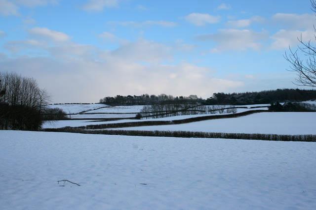 Looking towards Lings Hill