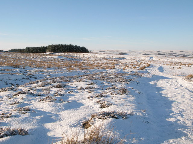 Snowy moorland and track west of Crawberry Hill
