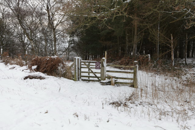 Stile on entrance to Cum Hag Wood