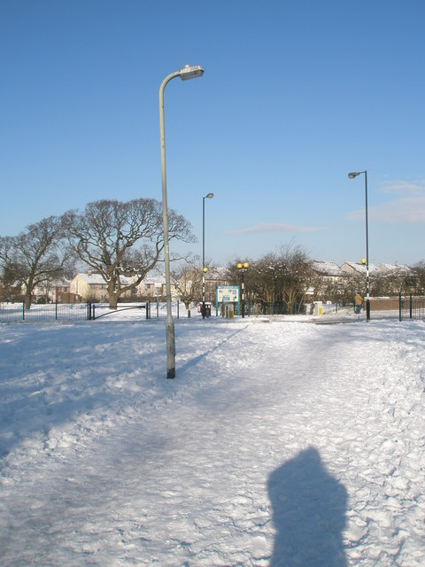 Lamppost in a snowy Purbrook  Way