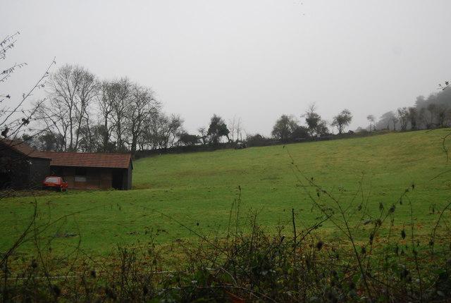 Field by Hill Lane