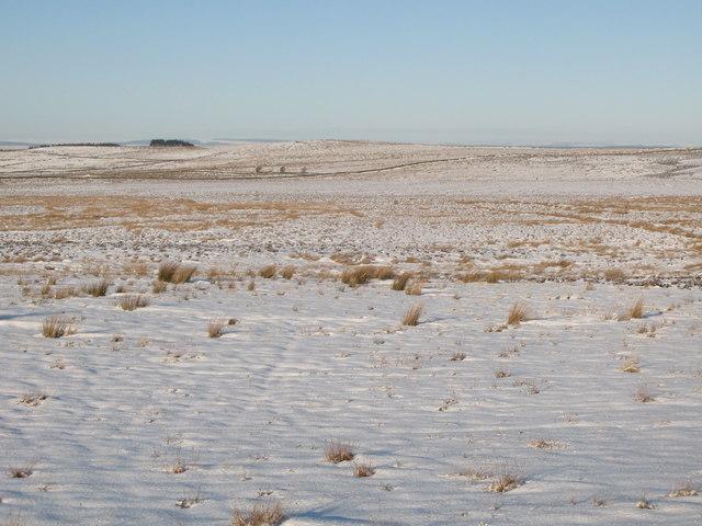Snowy moorland below Crawberry Hill (2)