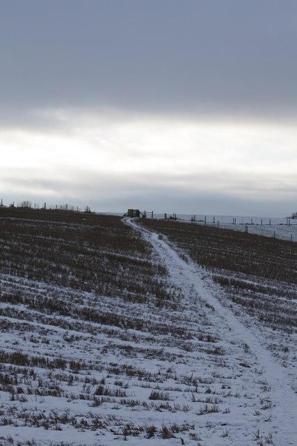 Footpath towards Ganthorpe and Terrington