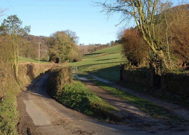 Gate, track and lane, Waterley Bottom