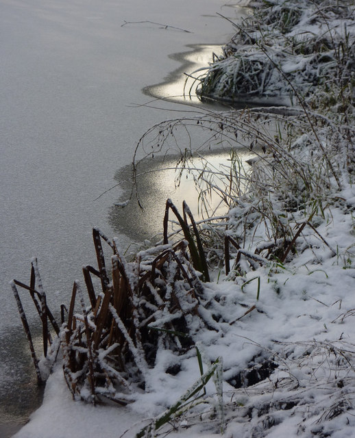 Riverbank detail in winter conditions