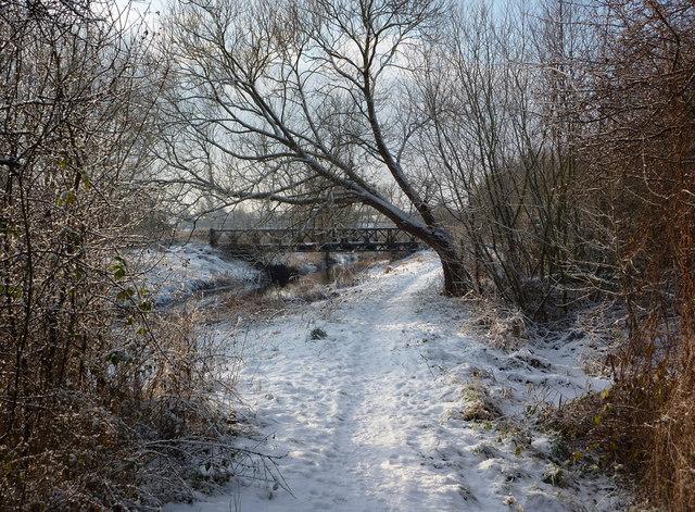 Riverside footpath in winter