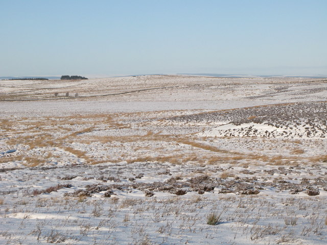 Snowy moorland between Crawberry Hill and the Foumart Hills (2)