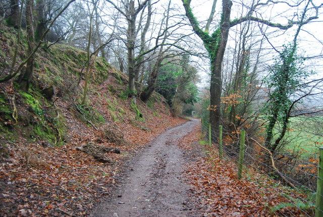 Footpath up Bicknoller Hill