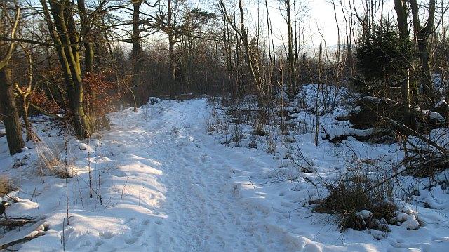 Path, Cullaloe Hills