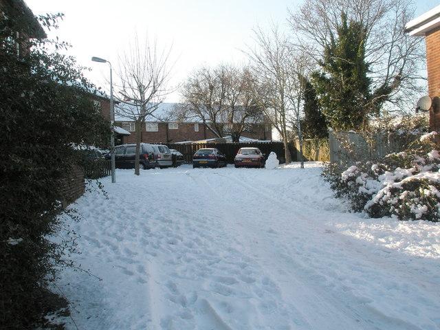 Looking north in a snowy Tarrant Gardens