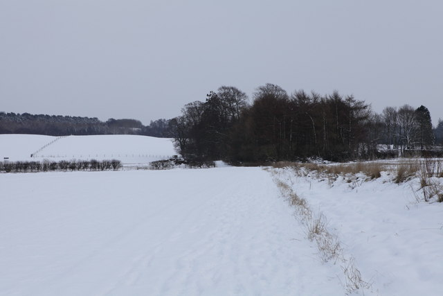 Footpath towards Castle Howard