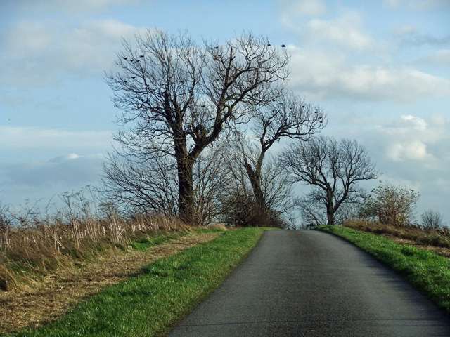 Middlegate near Worlaby