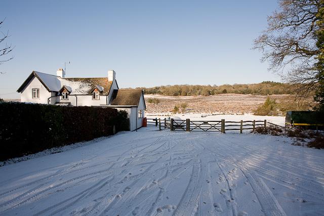 Holly Hatch Cottage