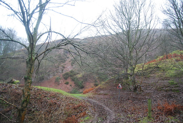 Disused Quarry, Bicknoller Hill