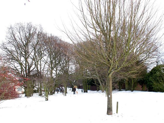 Walden Recreation Ground - north end