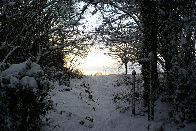 Footpath to Netherne, Surrey