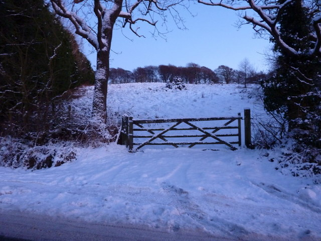 Gate on the south east side of Whalley Old Road