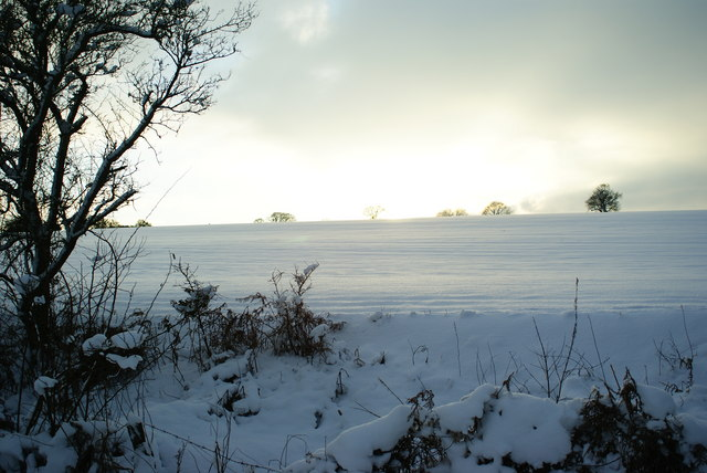 Winter Landscape at Chaldon, Surrey