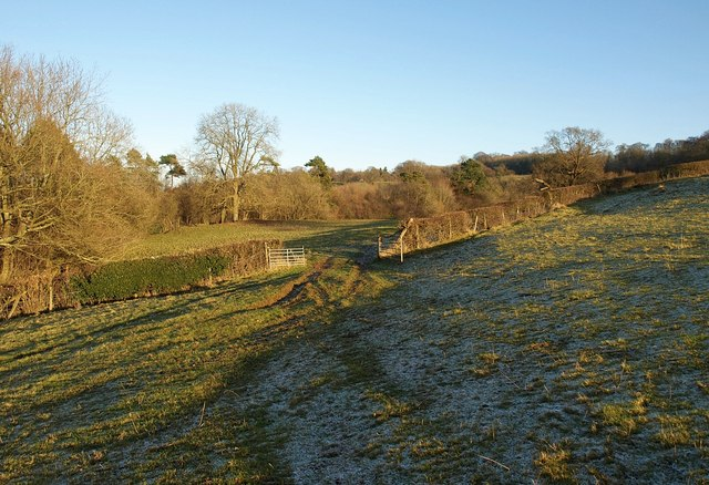Gateway above Grove Wood