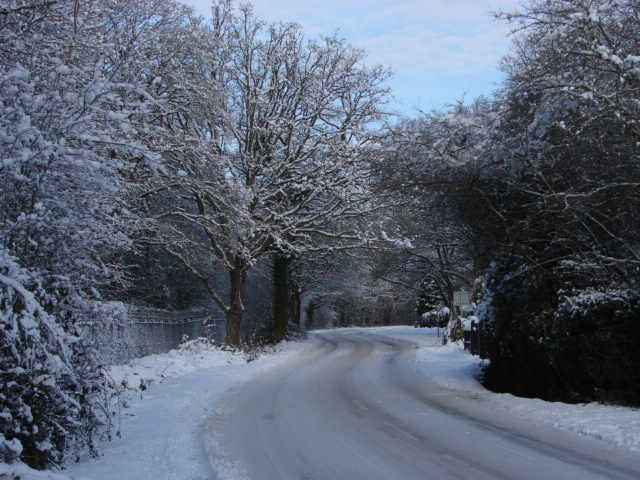 Queens Road, Bisley