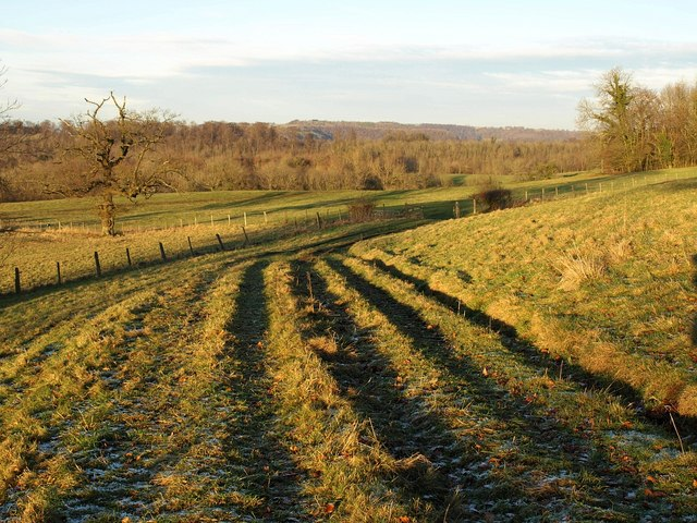 Track near The Ridge