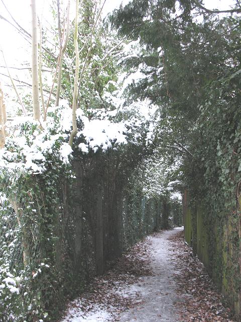 Green arch on a footpath