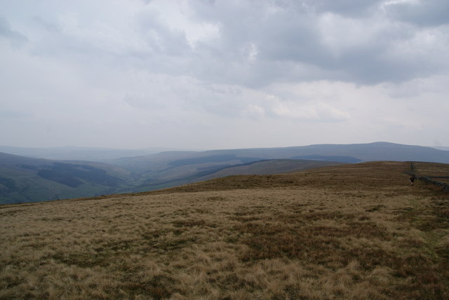 Looking along the ridge of Rise Hill