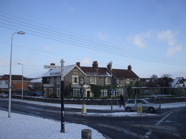 The Nut Tree, Worle