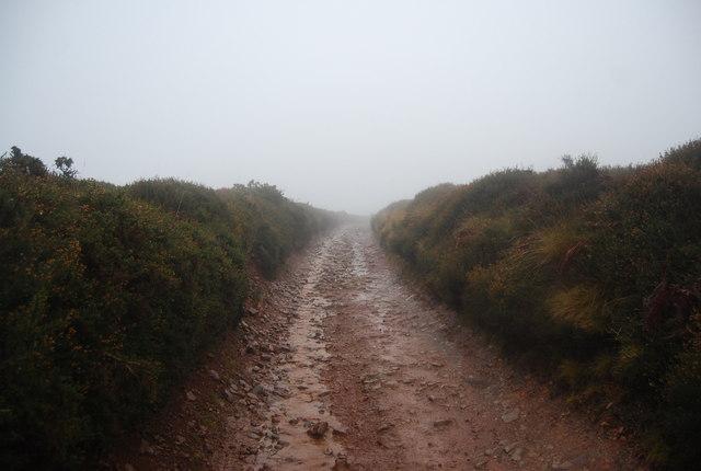 Track across the Quantock Hills