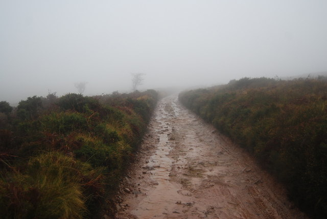 Macmillan Way West, on top of the Quantocks