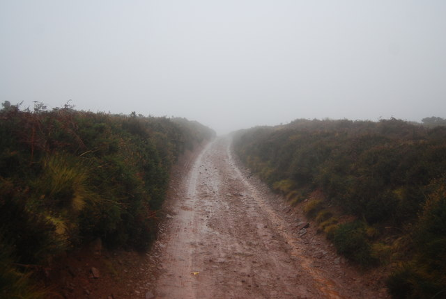 Track over the top of the Quantock Hills