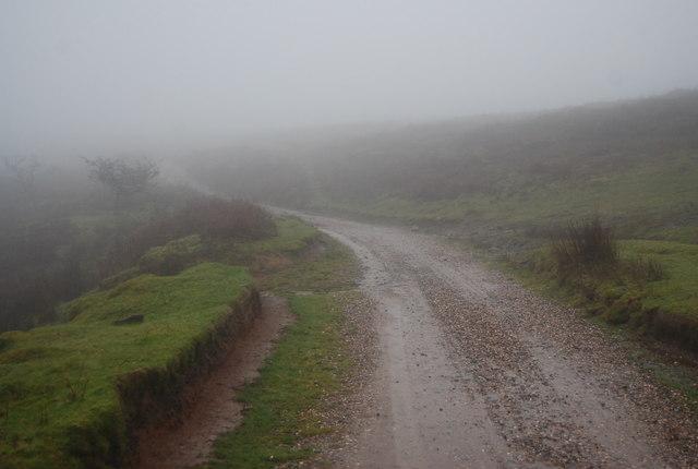 Macmillan Way crosses Thorncombe Hill