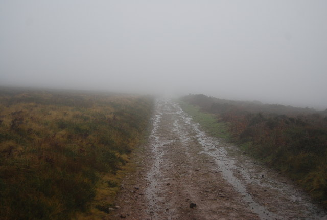 Track in the mist