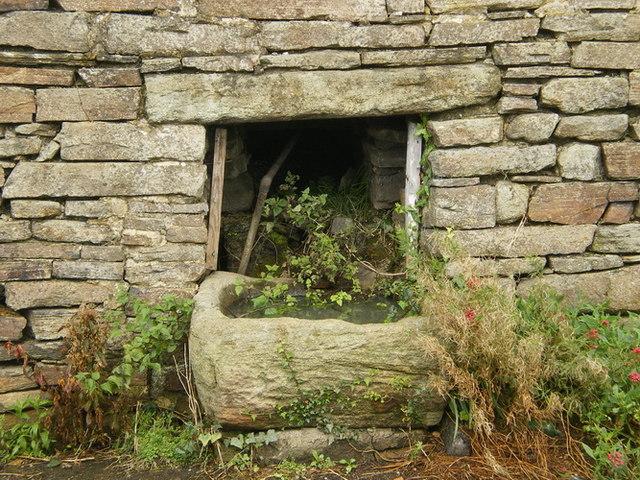 Stone trough, Low Bradley